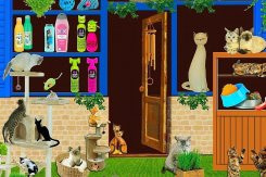 Pets Lover Must Know Their Pet's Nutrition Tips